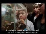 След. Пластмассовый зверинец 25.09.2014