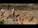 НТВ: Под Воронежем нашли древнее поселение счерепами мамонтов